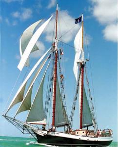 Liberty Fleet of Tall Ships