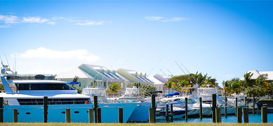 New Palm Cay Marina Beats Projected Growth
