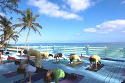 Introduction to Meditation Course Offered at Sivananda Yoga Retreat in the Bahamas