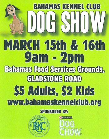 bahamas-dog-show
