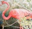 Doongalik Announces Watercolor Exhibition by Katrina Vanderlip
