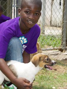 baark-bahamas-humane-society-3