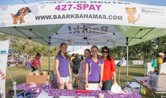 baark-bahamas-strut-your-mutt-laura-kimble-welcome